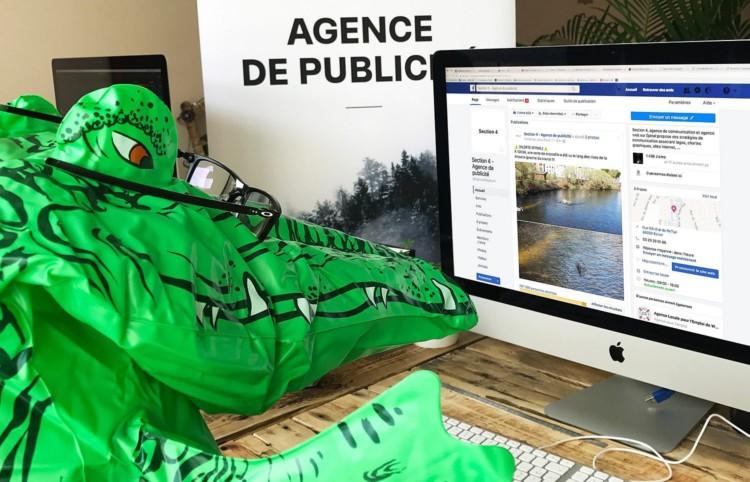crocodile-agence-publicite2-1-1500×964